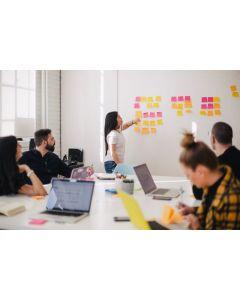 Diplomado Ejecutivo en desarrollo de habilidades directivas