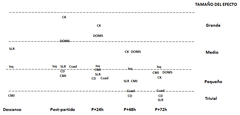 Figure 1. Time evolution of changes (average of effect size) in different neuromuscular, biomechanical parameters, perceptive responses, and physical performance at rest, immediately, one (P+24h), two (P+48h) and three (P+72h) days after the game. Hamstrings (hams), Quadriceps (Quad), Creatine Kinase (CK), Delayed Onset Muscle Soreness (DOMS), Straight-Line Sprint (SLS), Countermovement Jump (CMJ) and Change of Direction (CD)