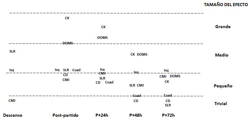 Figura 1. Evolució temporal dels canvis (mitjana de la magnitud de l'efecte) en diferents paràmetres neuromusculars, biomecànics, respostes perceptives i rendiment físic en el descans, immediatament, un (P+24h), dues (P+48h) i tres (P+72h) dies després del partit. Isquiotibials (isq), Quàdriceps (Cuad), Creatincinasa (CK), Dolor Muscular d'Inici Retardat (DOMS), Esprint Línia Recta (SLR), Countarmovement Jump (CMJ) i Canvi de Direcció (CD)